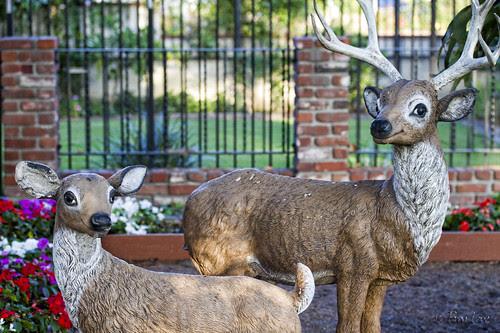 Deer yard art