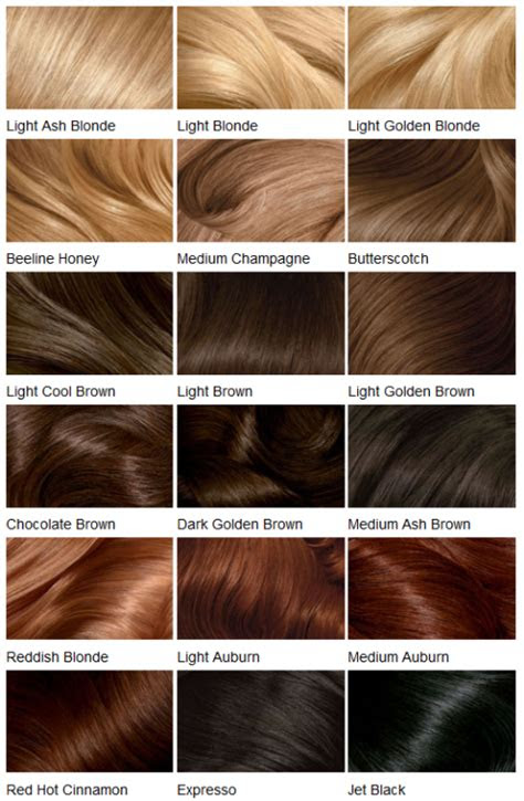 light brown clairol hair color chart clairol hair color loreal hair
