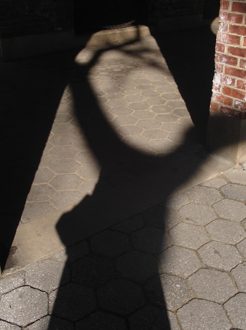 shadow and brick