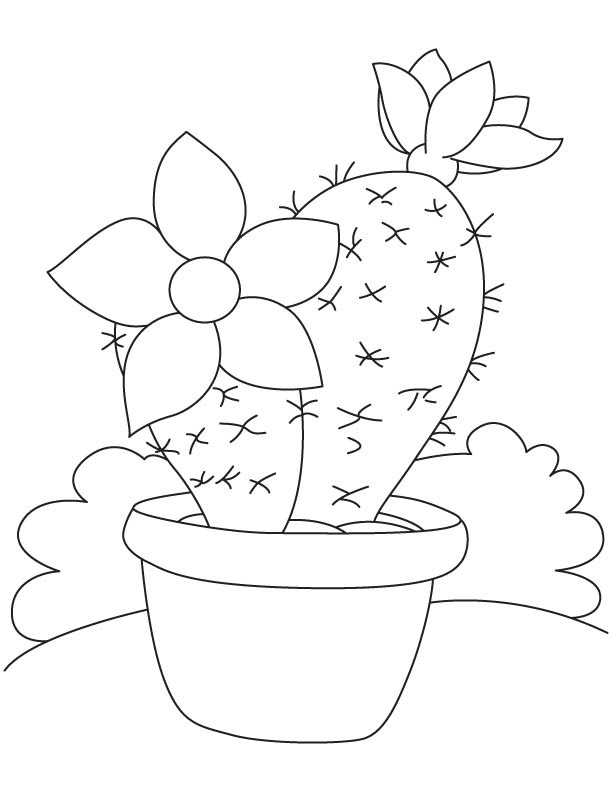Large Flower On Cactus Coloring Page Download Free Large Flower On Cactus Coloring Page For Kids Best Coloring Pages
