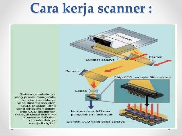 Cara Kerja Monitor dan Printer