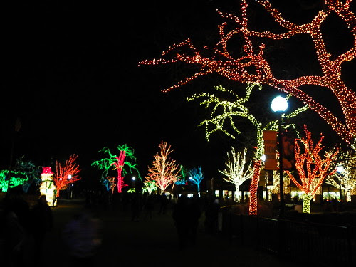 ZOO Lights , Chicago Lincoln Park Zoo (9)