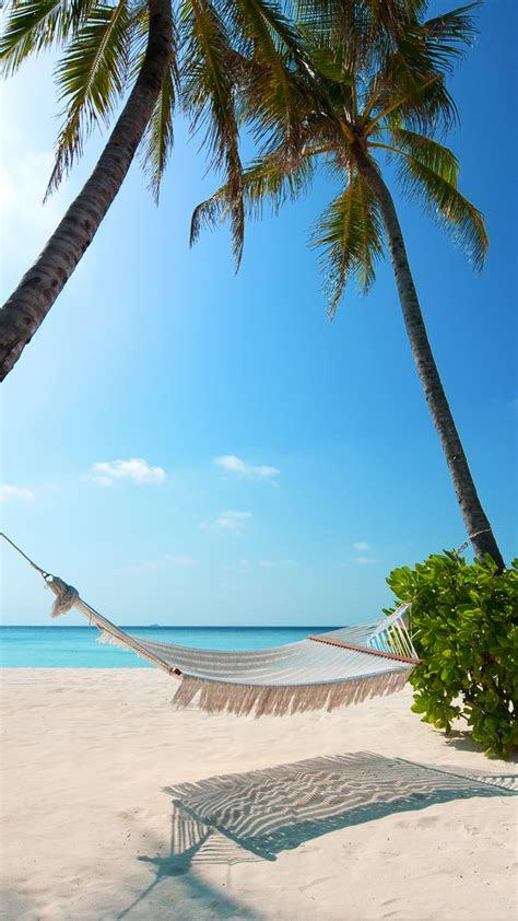 wallpaper tropical beach beach resorts maldives palm trees hd nature  wallpaper