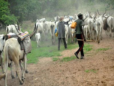 Herdsmen, Nasarawa