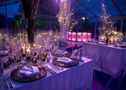northern lights themed wedding   Google Search   Poveda