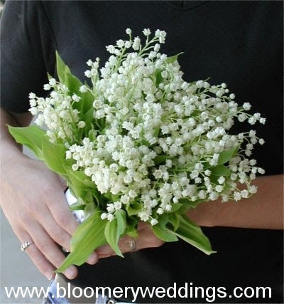 Wedding flowers white flower wedding bouquets white flower wedding bouquets mightylinksfo Image collections
