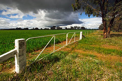 Wangaratta, Victoria, Australia, farm IMG_0809_Wangaratta