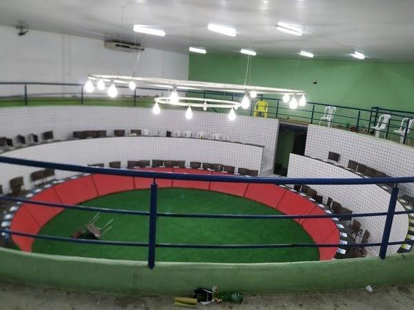 Operação fecha 'estádio' que sediava campeonato nacional de rinha de galos no Ceará e resgata 167 animais