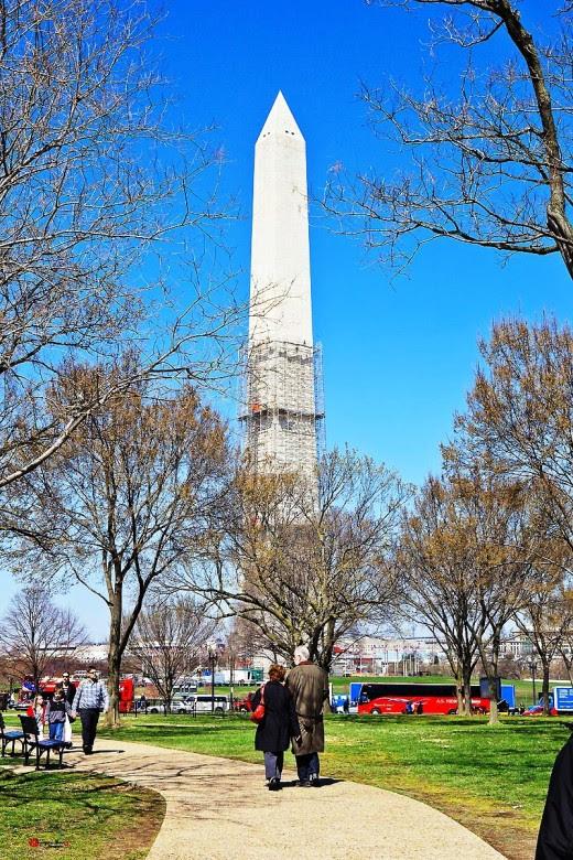 001 Washington by Nguyễn Sơn