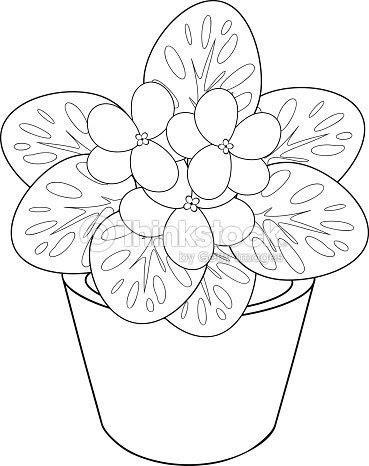 Page De Coloriage Avec Pot De Fleur De Violette Dafrique Clipart