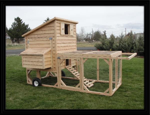Greenhouse Chicken Coop Design Cold Climate Coopy Co