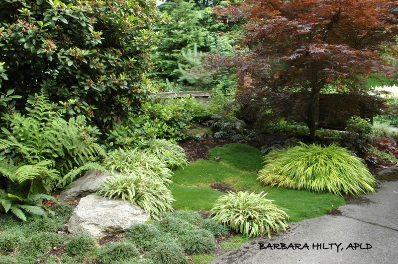 Lanscape Design Portfolio Before And Afters Barbara Hilty