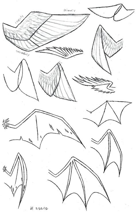 draw folded dragon wings wing study