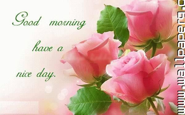 Download Happy Morning Have A Nice Day Good Night Wallpaper For