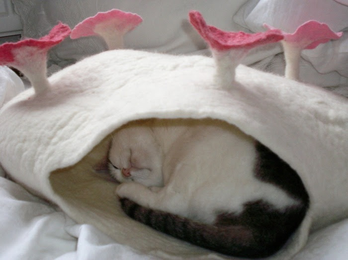 Гнезда для кошек из войлока. Сюзанна Карг. Фото