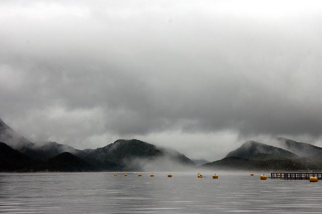 IMG_4465 Saltstraumen buoys