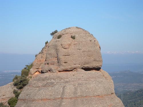 Rock face (close)