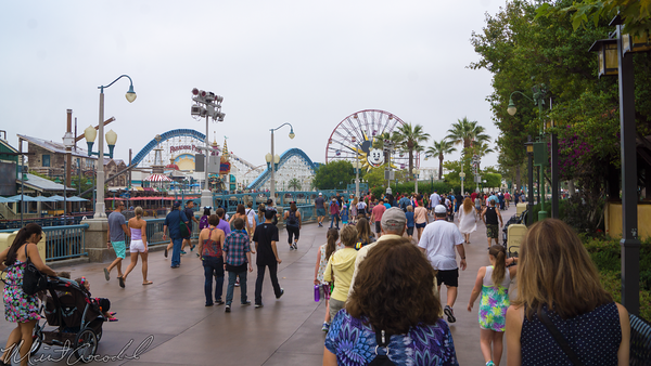 Disneyland Resort, Disneyland60, Disney California Adventure