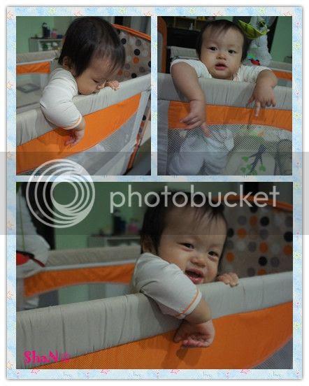 photo 7_zps05ab8071.jpg