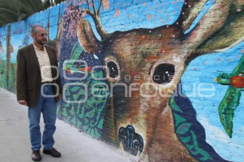 Agencia Enfoque Murales Ambientales