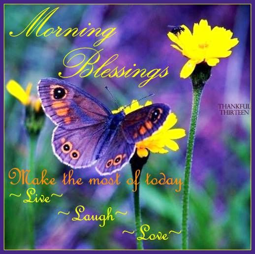 Morning Blessings Make The Most Of Today Pictures Photos And