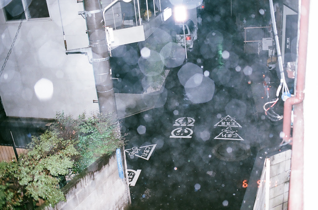 rain (3 of 5)