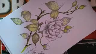 All Clip Of Sketsa Gambar Bunga Bhclipcom