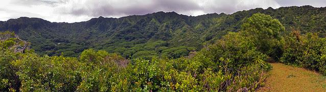 Puu Pia Panorama 01