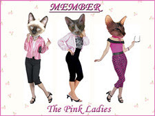 Pink Lady Member