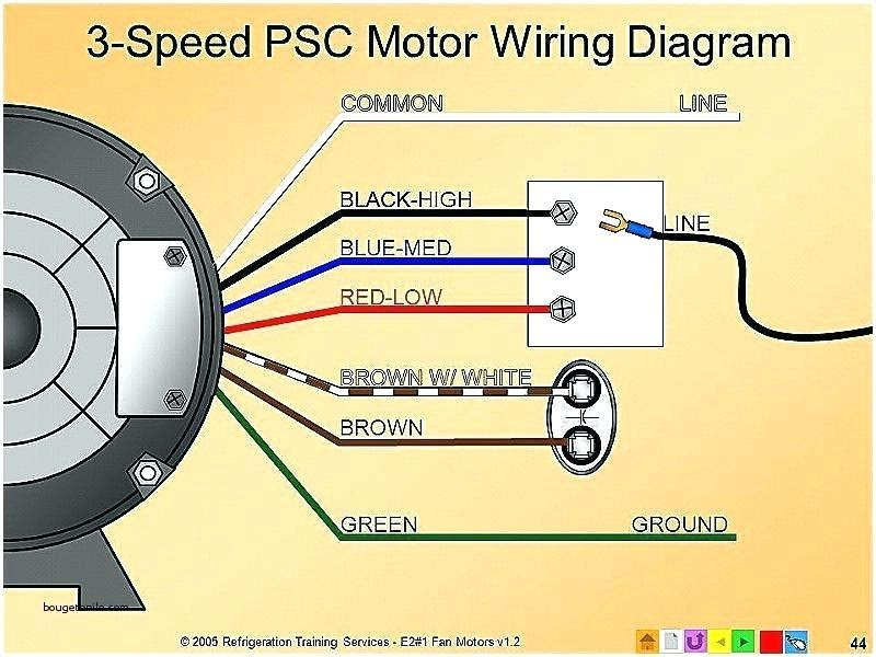 Electric Fan Wiring Diagram Philippines : Dowell Philippines - D 2007  toyota new car features. - anthonyburted | Adjustable Electric Fan Wiring Diagram |  | Blogger.com