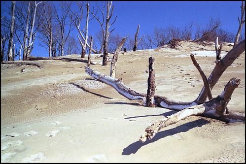 Warren Dunes No. 2