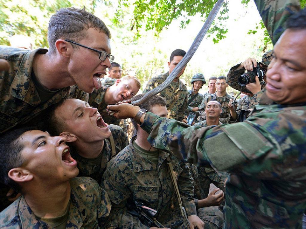 Cobra Gold 2013 - Militares sobrevivem com sangue de cobra na selva tailandesa 08