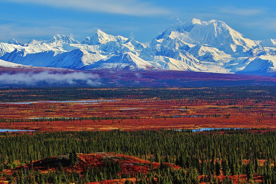 Alaska Photograph  Alaskan Autumn Wilderness by David Broome