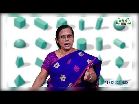 7th Science இயற்பியல் அளவீட்டியியல் பருவம் 1 அலகு 1 Kalvi TV