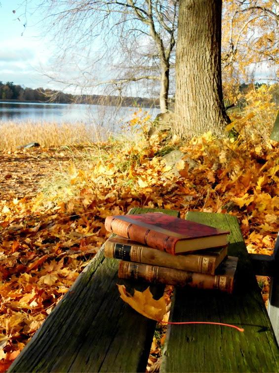 Осенние книги