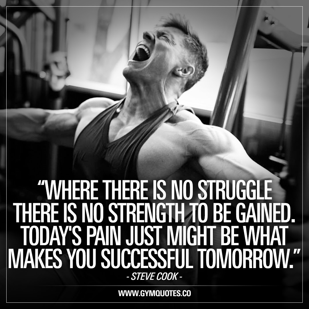 Steve Cook Quotes Where There Is No Struggle There Is No Strength