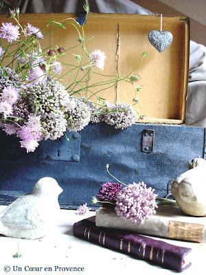 Mise en scène vieille malle et fleur d'ail sauvage