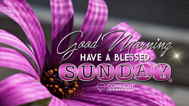 Good Morning Have A Blessed Sunday Commentwarehouse Say It With