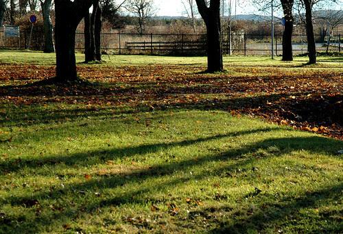 fall park :: høstparken