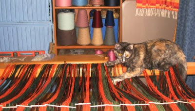 Catzee couldn't resist all that yarn!