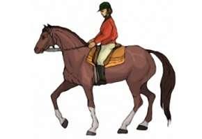 Ausmalbilder Pferde Reiterin