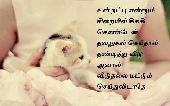 Latest Friendship Image Download Download Kfc Video