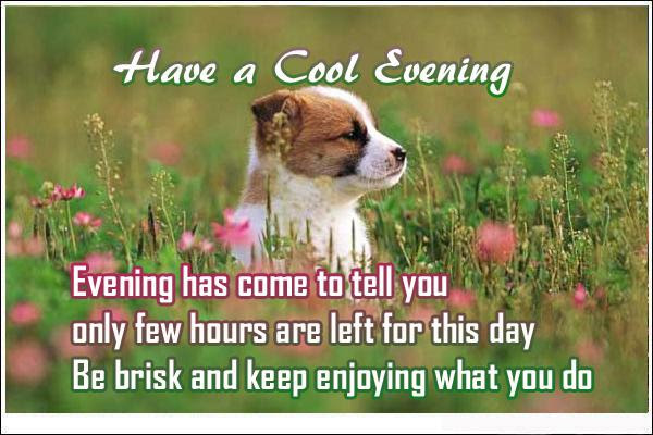 Quotes About Cool Evening 26 Quotes