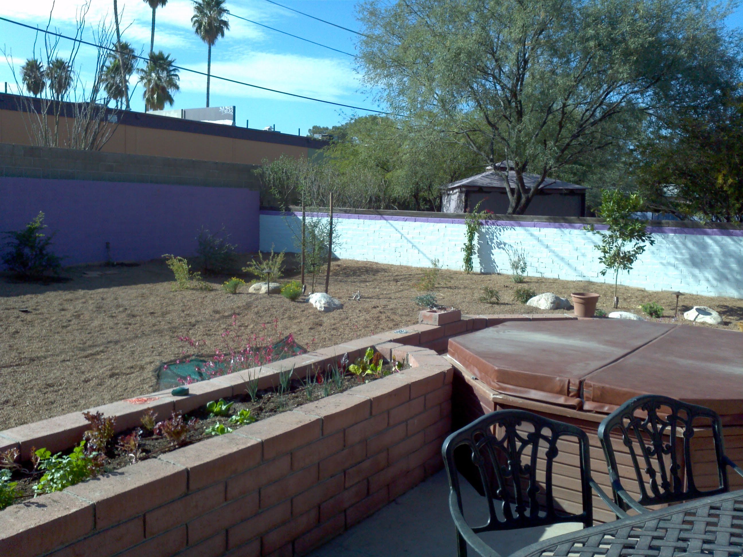 Designing A Backyard Landscape