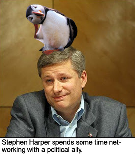 Stephen Harper and political ally, the puffin.