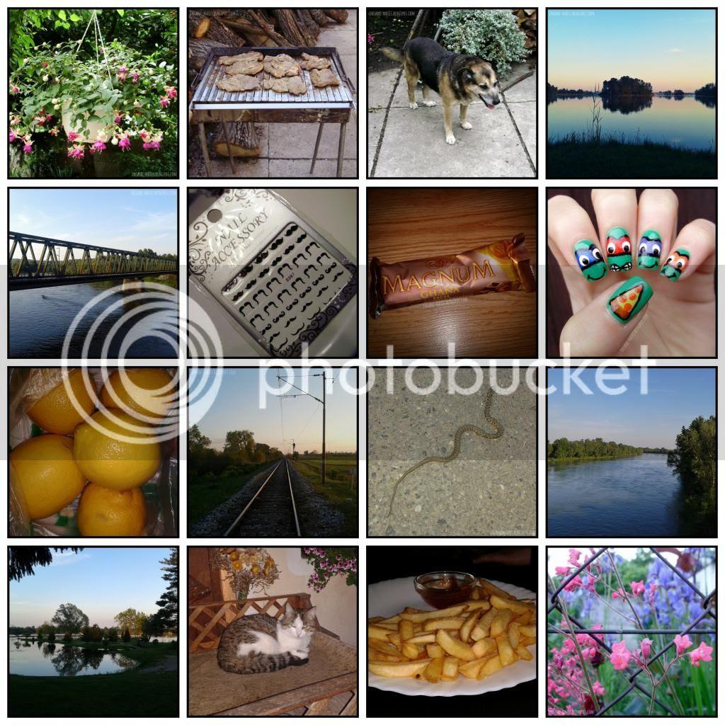 photo 05_2014_zps0a2912ba.jpg
