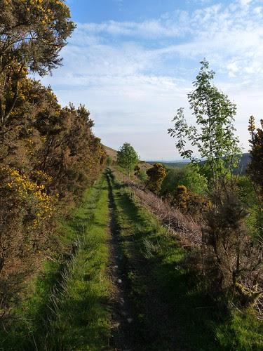 12468 - Cwm Dulais valley