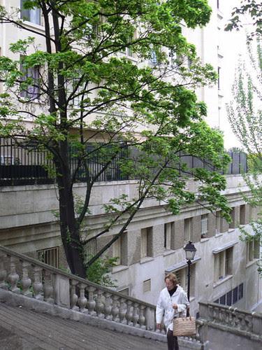 escaliers parc de passy.jpg
