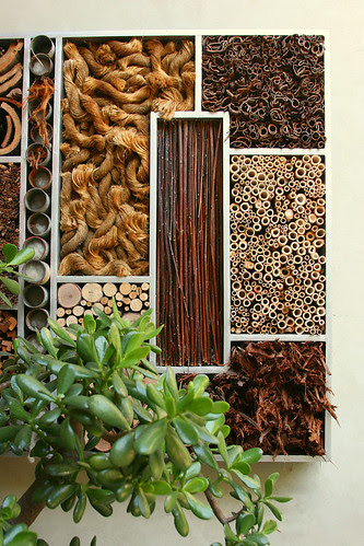 insectary detail