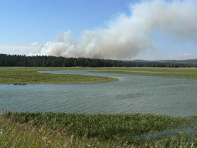 Yellowstone, le feu au loin.jpg